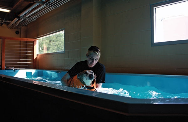 hydrotherapy_1_600